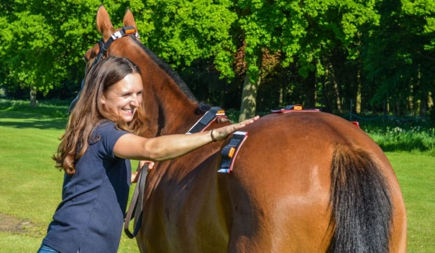 Equine Gait Analysis Technology