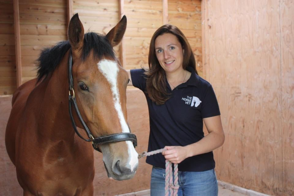 Treating equine wounds