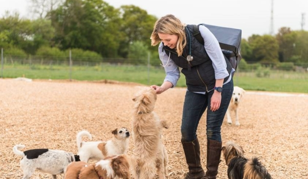 How temperature-controlled packaging innovation is helping the animal health sector deliver on vital vaccine compliance