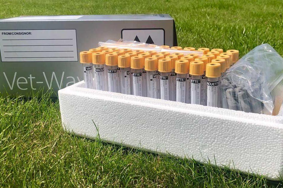 Vet field kit for flock surveillance