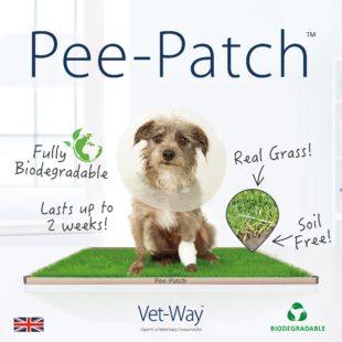 Pee-Patch
