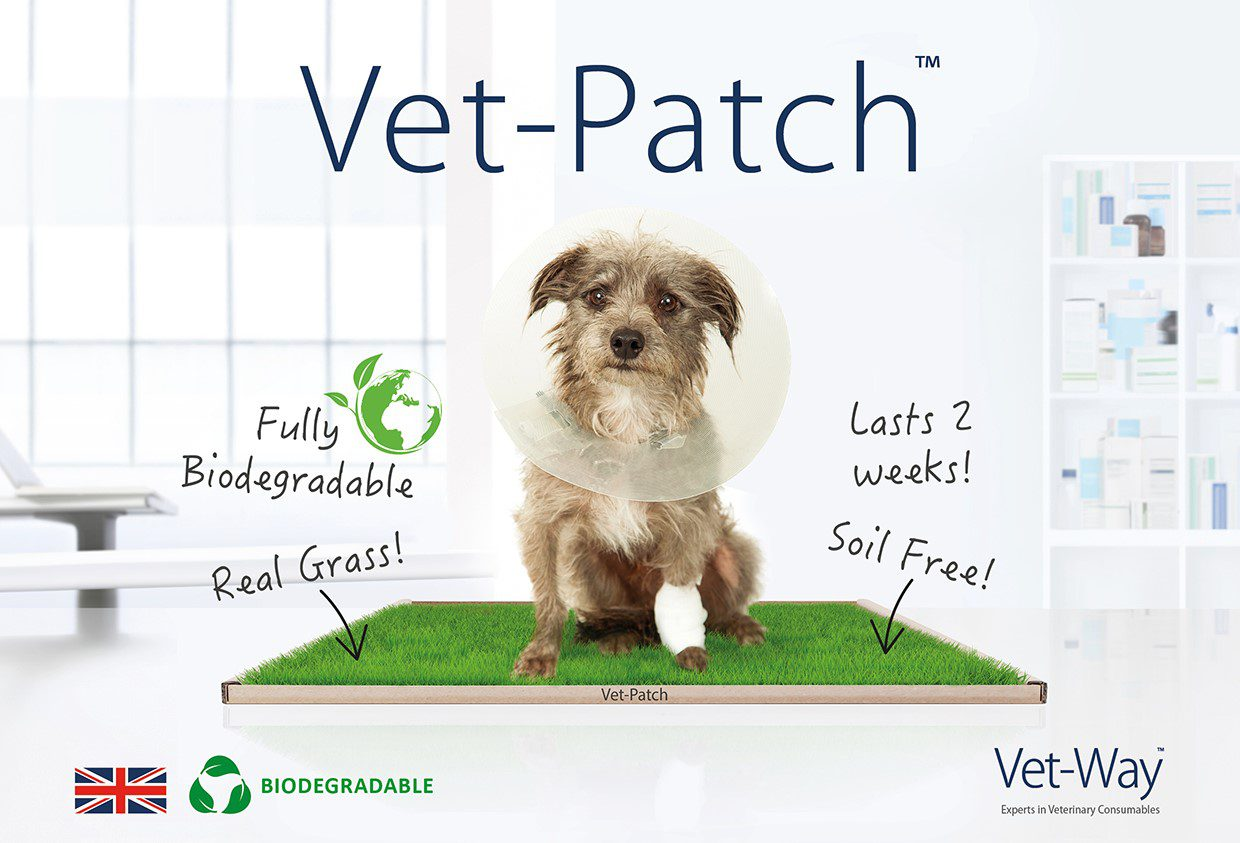 Vet patch sml jpeg pee-patch: the natural green grass patch